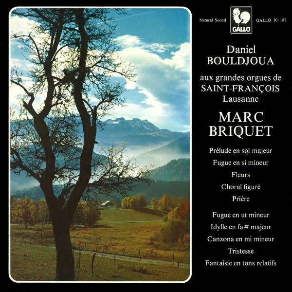 Marc Briquet - Daniel Bouldjoua, orgue